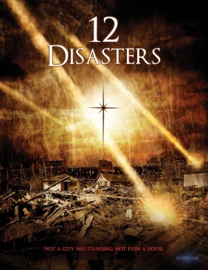 The 12 Disasters of Christmas poster