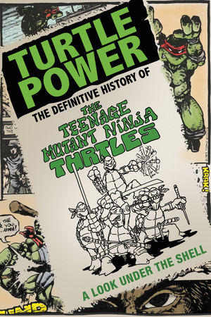 Turtle Power: The Definitive History of the Teenage Mutant Ninja Turtles poster