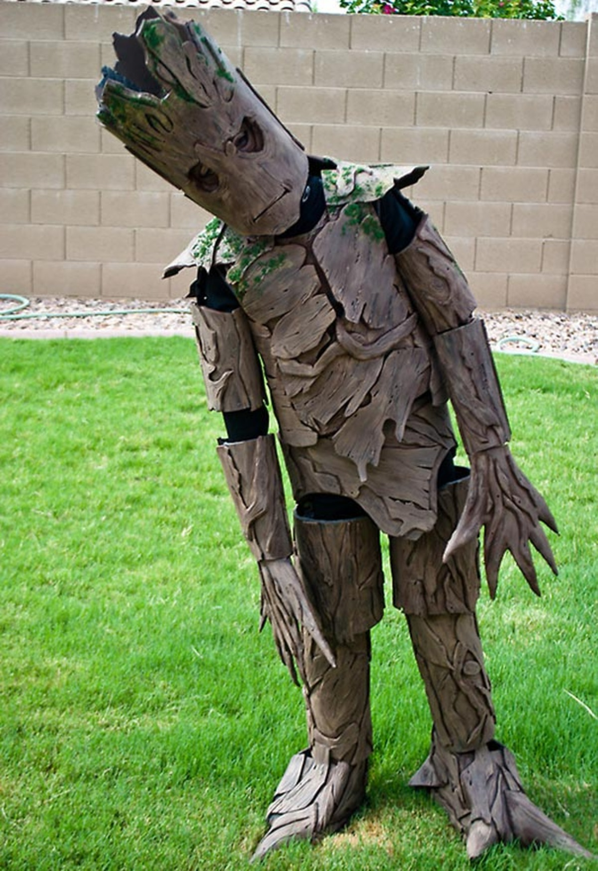Large groot