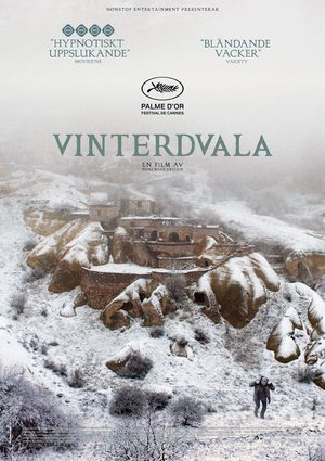 Vinterdvala poster