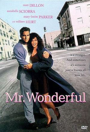 Mr. Wonderful poster