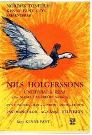 Nils Holgerssons underbara resa poster