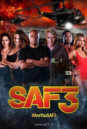 SAF3 poster