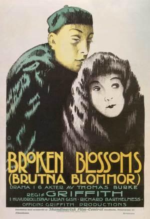 Brutna Blommor poster