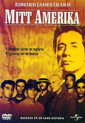 Mitt Amerika poster