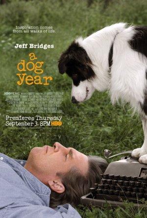 Hundår poster