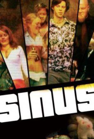 Sinus poster