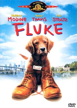 Fluke poster