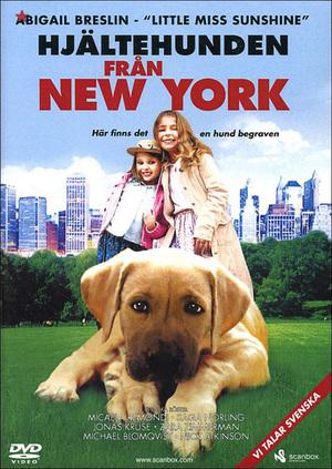 Hjältehunden från New York poster