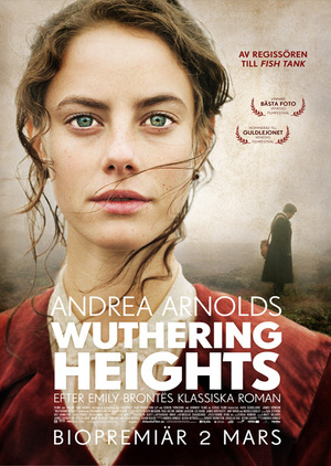 an analysis of the insanity in wuthering heights novel by emily bronte It is defined as the state of having a serious mental illness, extremely foolish  in  her novel, wuthering heights, emily bronte had a method behind the  we have  so large base of authors that we can prepare a unique summary of any book.