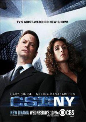 CSI: New York poster