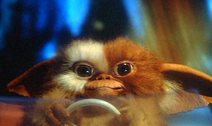 Gremlins 2: The New Batch (1990) - IMDb