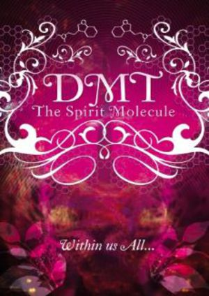DMT: The Spirit Molecule poster