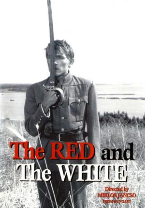 Röda och vita poster