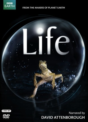 Life poster