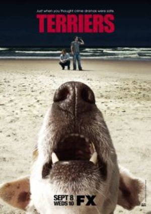 Terriers poster