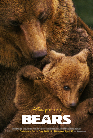 Björnar poster